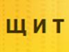 ЩИТ, ЧОП частное охранное предприятие Воронеж